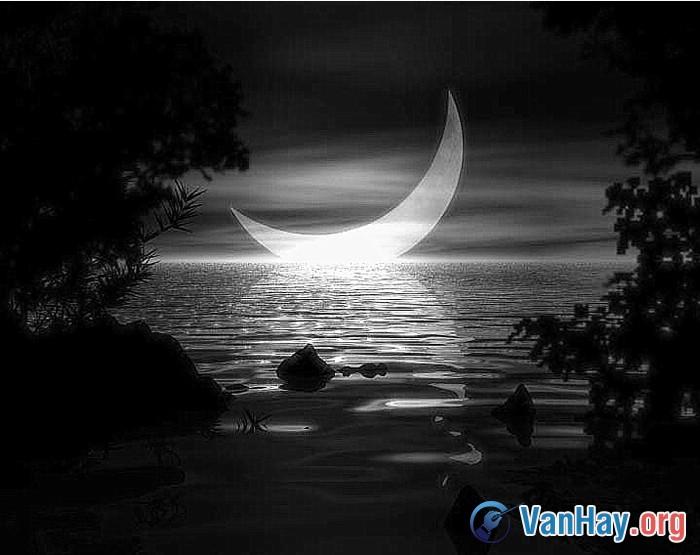 Ánh trăng - Nguyễn Duy